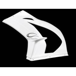 KAWASAKI ZX10R Flanc latéral gauche Avio fibre Carbonin
